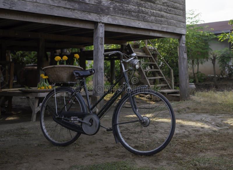 Las bicis antiguas se colocan cerca de casas de madera tailandesas tradicionales en el noreste de Tailandia foto de archivo libre de regalías