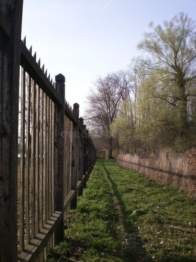 Las blisko miasta obrazy stock