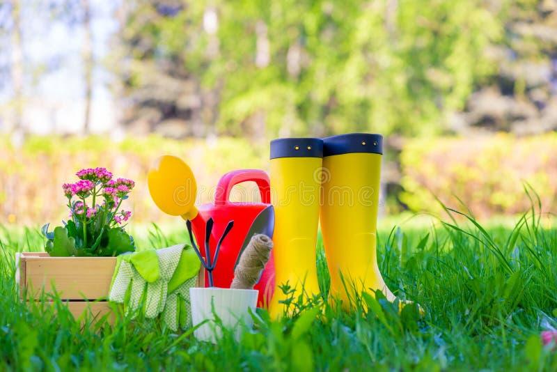 Las botas de goma al lado de las herramientas para trabajar en el jardín están en un césped verde fotos de archivo