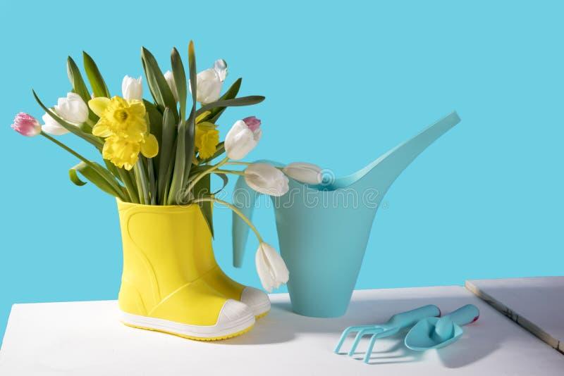 Las botas de goma amarillas con un ramo de flores de narcisos amarillos y de tulipanes blancos y rosados en la tabla de madera bl fotografía de archivo