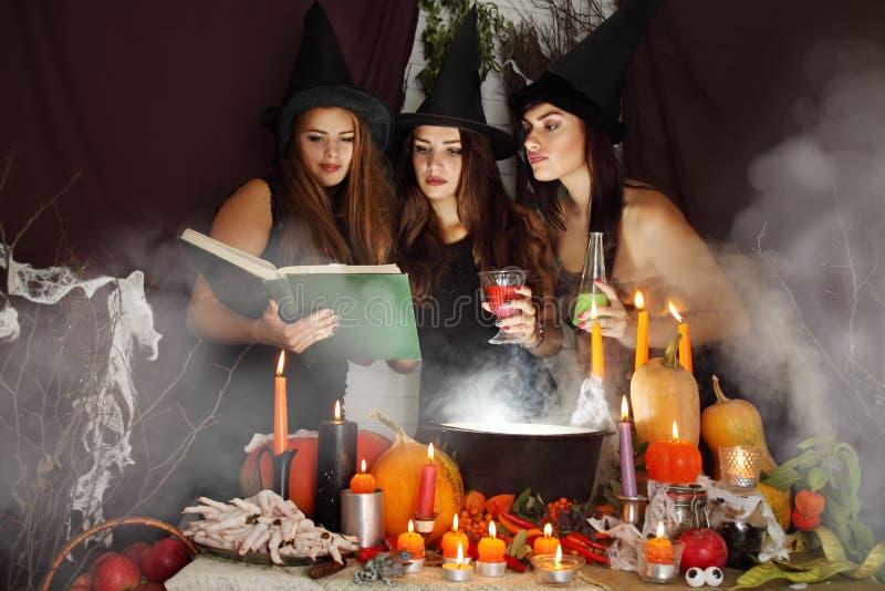 Las brujas miran en el libro imágenes de archivo libres de regalías