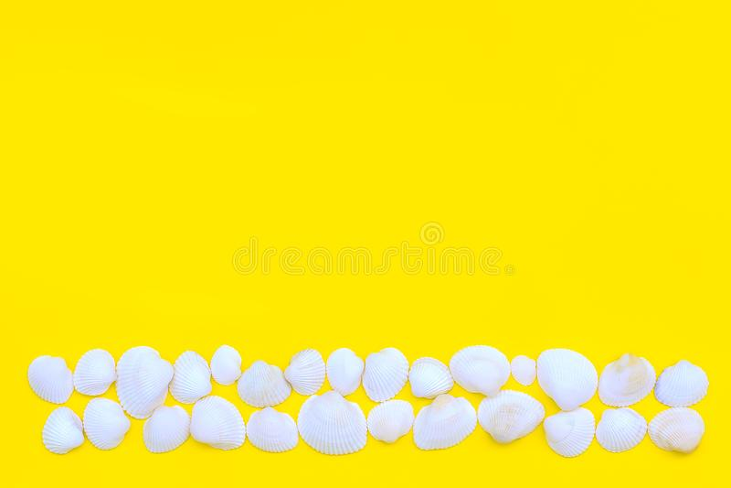 Las cáscaras del mar blanco presentaron como una tira o línea en un fondo amarillo brillante Tema caliente del verano y de la pla fotografía de archivo