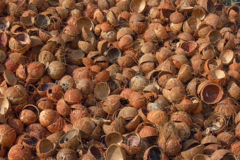 Las cáscaras vacías del coco llenaron para arriba materia prima para el carbón de leña activado para las industrias cuencos vacío fotos de archivo libres de regalías