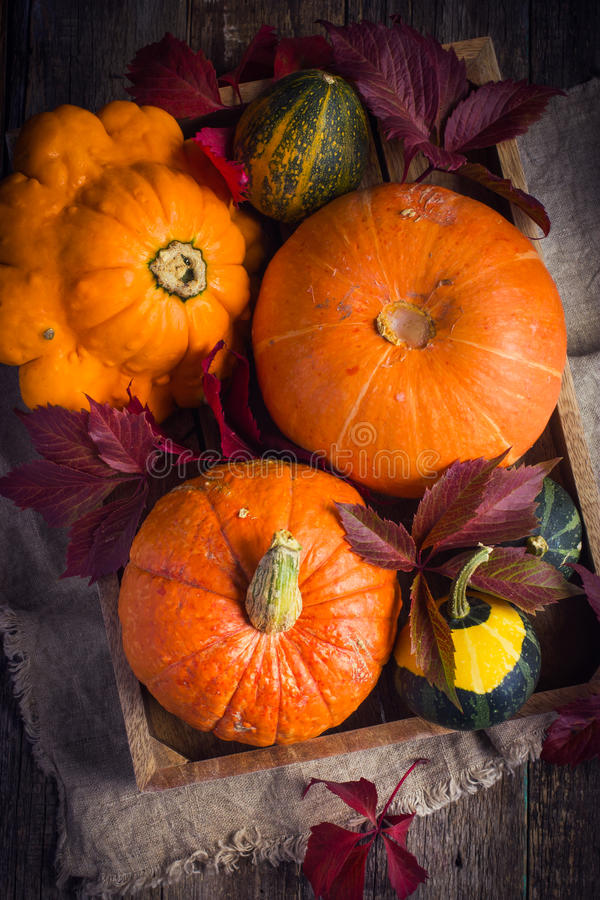 Las calabazas y el otoño colorearon las hojas en la bandeja de madera foto de archivo
