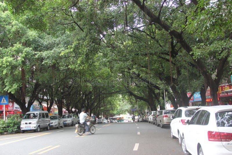 Download Las Calles Tranquilas En SHEKOU SHENZHEN Foto de archivo editorial - Imagen de fondo, tráfico: 42433528