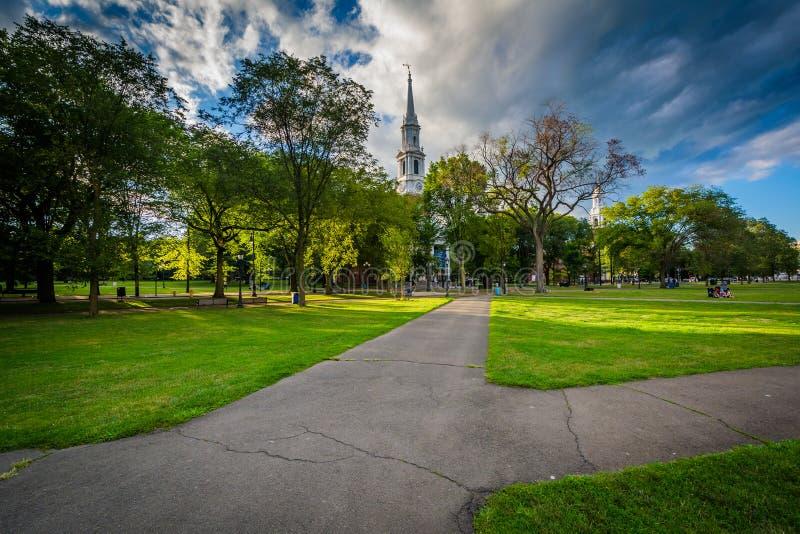 Las calzadas en New Haven se ponen verde en New Haven céntrica, Connectic fotografía de archivo libre de regalías