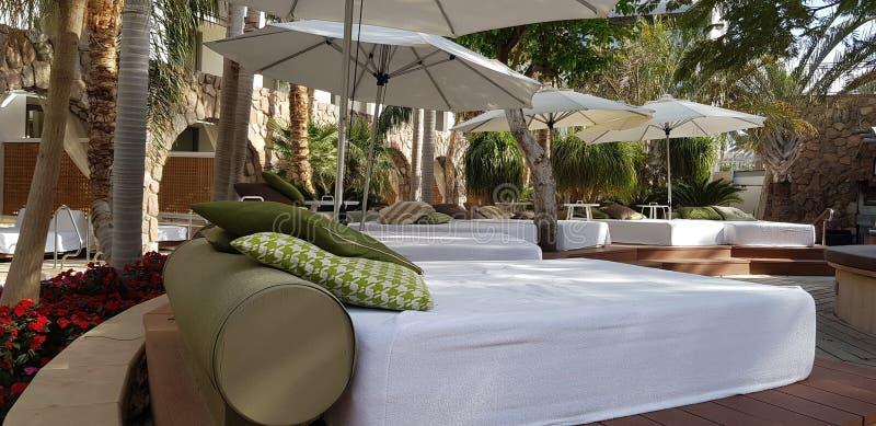 Las camas vacías para broncean y resto con las almohadas verdes y los colchones blancos fotografía de archivo