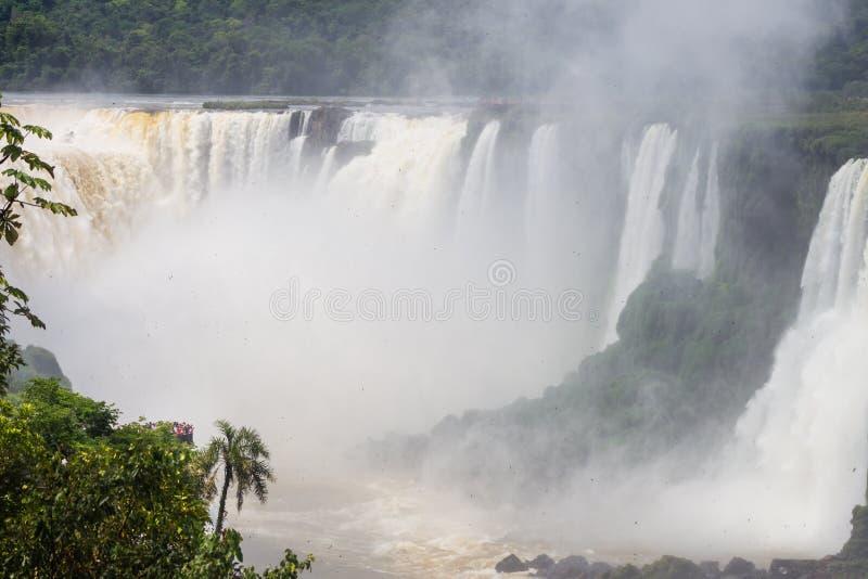 Las cascadas asombrosas de Iguazu en el Brasil y la Argentina foto de archivo