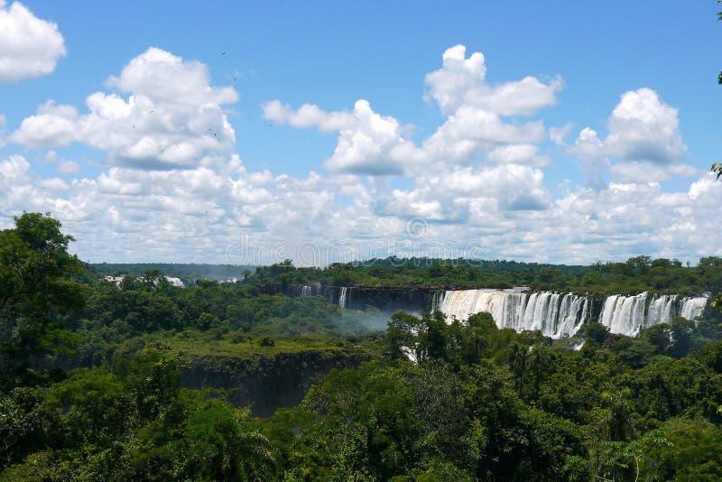 Las cataratas del Iguazú en la frontera del Brasil y de la Argentina en la Argentina imágenes de archivo libres de regalías