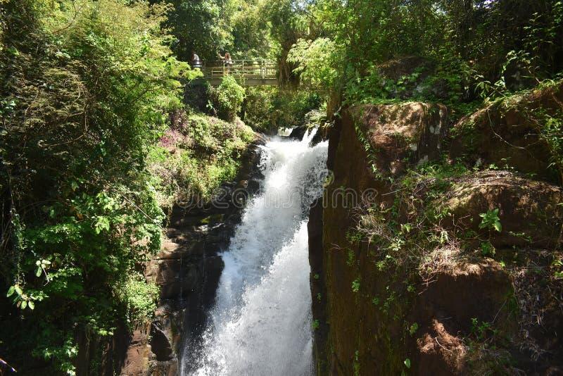 Las cataratas del Iguazú, son una de las señales naturales más espectaculares del mundo foto de archivo libre de regalías