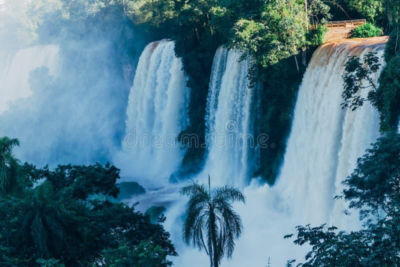 Las cataratas del Iguaz? en la provincia de la Argentina Misiones imágenes de archivo libres de regalías