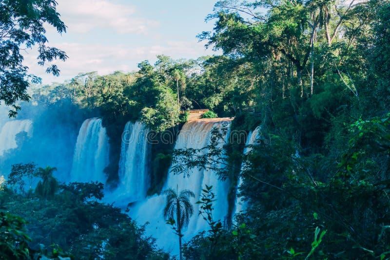 Las cataratas del Iguaz? en la provincia de la Argentina Misiones foto de archivo