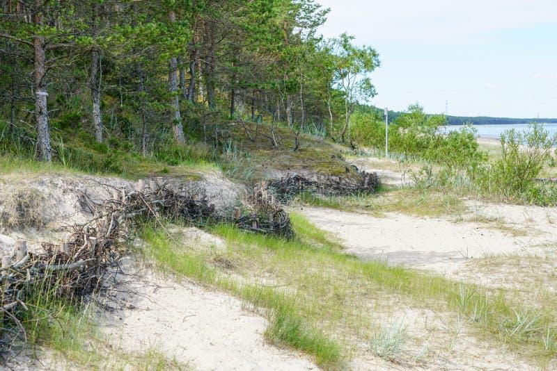 Las cercas de mimbre en la playa para la detención del movimiento de la arena y de la reducción del hombre hicieron efectos fotografía de archivo