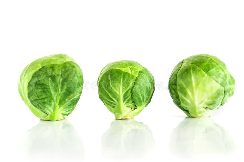 Las coles de Bruselas verdes frescas vegetales en el fondo blanco fotos de archivo libres de regalías