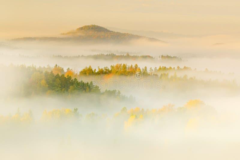 Las colinas con los árboles del otoño en la niebla se nublan Mañana de niebla en un valle de la caída del parque bohemio de Suiza foto de archivo libre de regalías