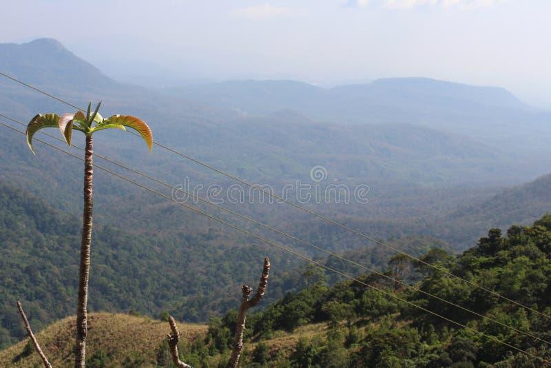 Las colinas tienen ojos y verde imagen de archivo