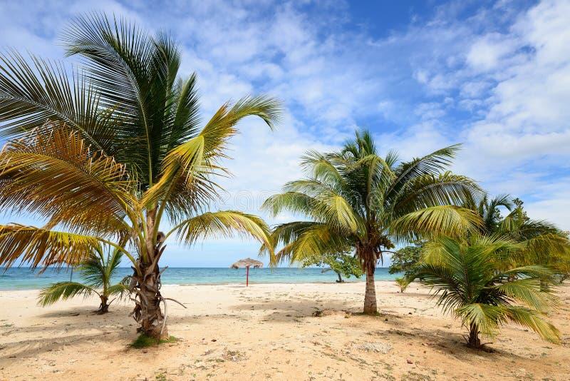 Las Coloradas strand i Kuba arkivbilder