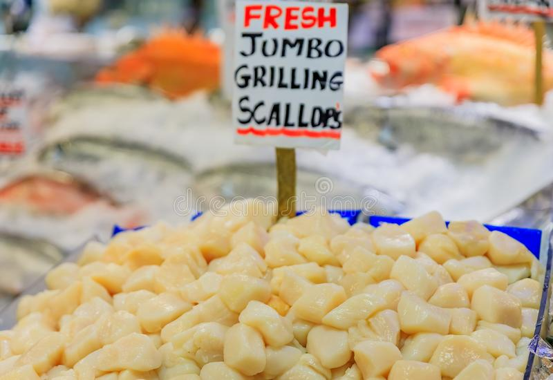 Las conchas de peregrino en el hielo en venta en Pike ponen el mercado en Seattle, Washington foto de archivo libre de regalías