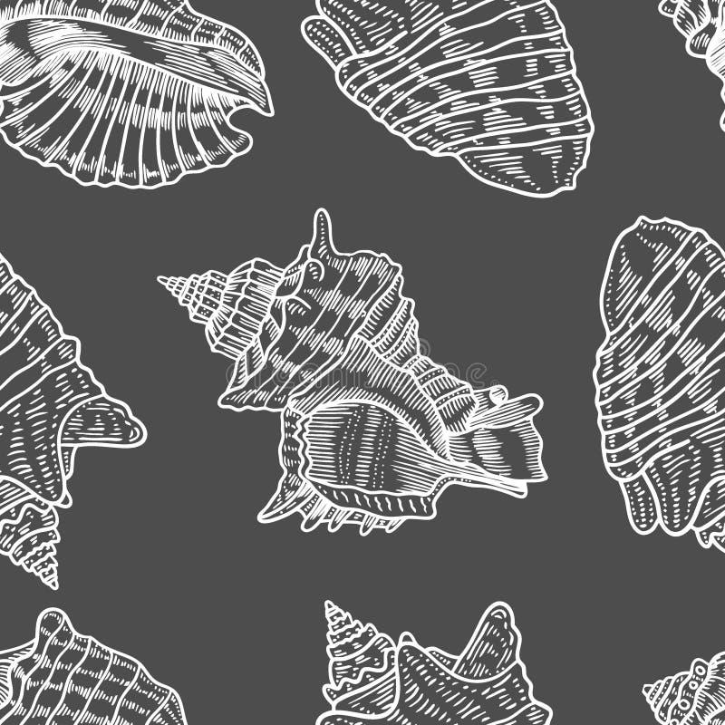 Las conchas marinas vector el modelo inconsútil ilustración del vector
