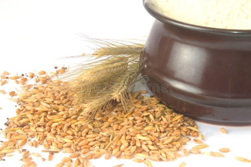 Las cosechas del trigo y un tazón de fuente se llenaron de la harina fotos de archivo