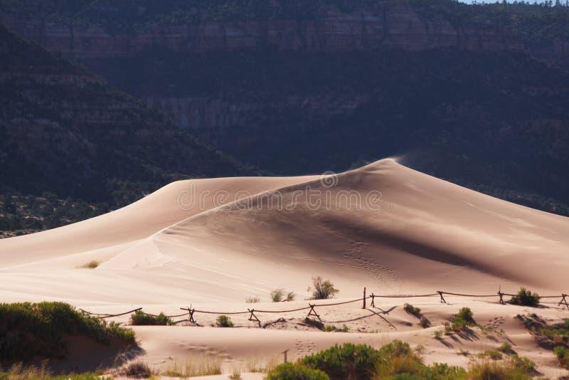 Las dunas de arena de Coral fotos de archivo libres de regalías