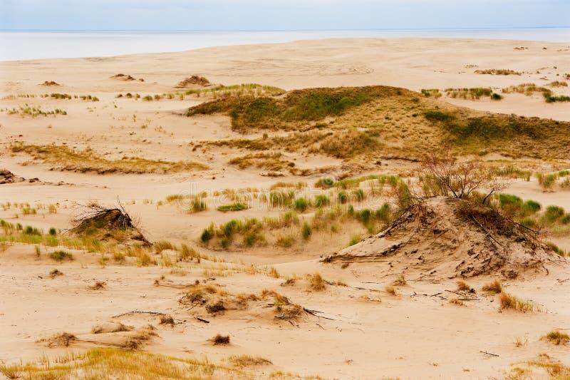 Las dunas del mar Báltico fotos de archivo
