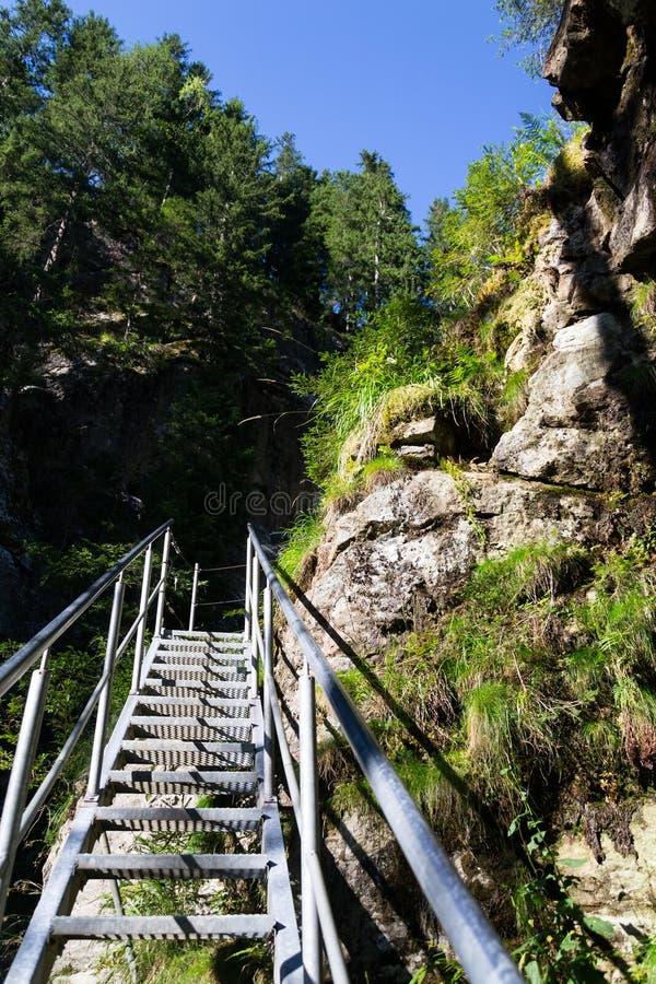 Las escaleras de la escalera en rastro alpino con infierno gorge, Schladming, Austria fotos de archivo libres de regalías