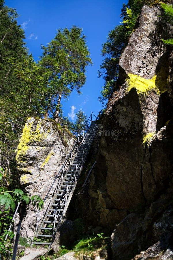 Las escaleras de la escalera en rastro alpino con infierno gorge, Schladming, Austria fotografía de archivo libre de regalías