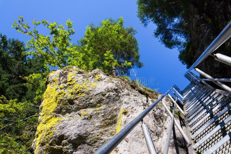 Las escaleras de la escalera en rastro alpino con infierno gorge, Schladming, Austria fotos de archivo