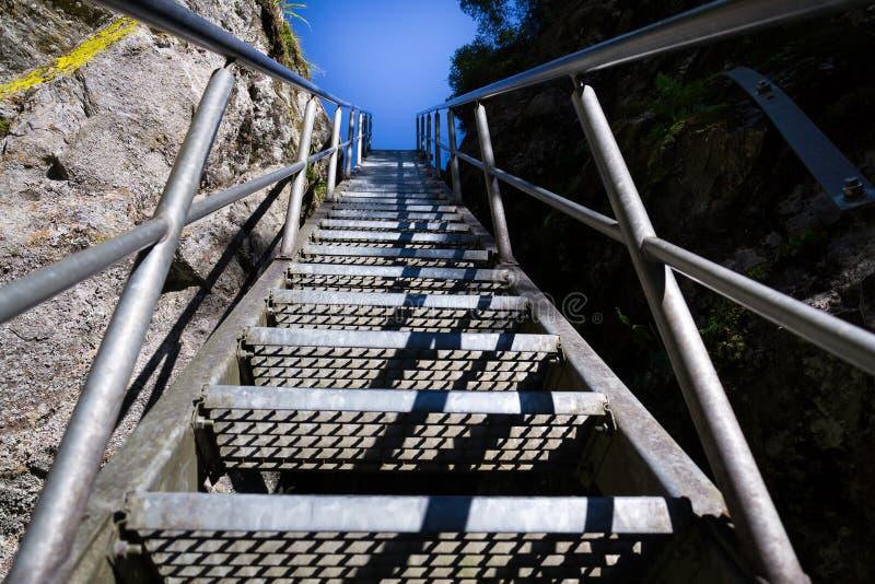 Las escaleras de la escalera en rastro alpino con infierno gorge, Schladming, Austria fotografía de archivo