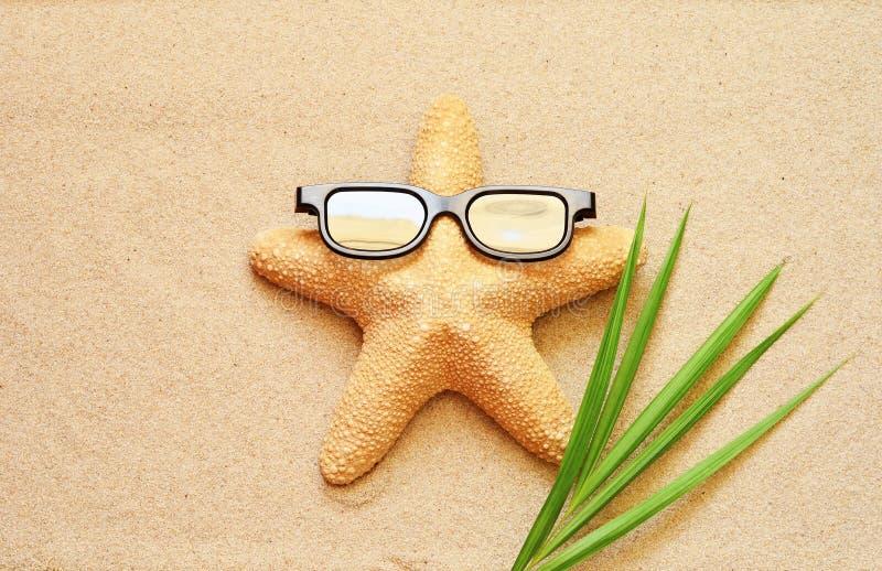 Las estrellas de mar divertidas en el verano varan con la arena fotografía de archivo
