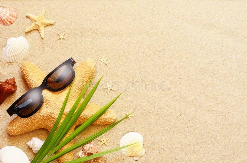 Las estrellas de mar y las conchas marinas divertidas en el verano varan con la arena foto de archivo