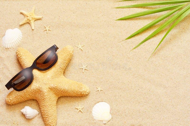 Las estrellas de mar y las conchas marinas divertidas en el verano varan con la arena imagen de archivo libre de regalías