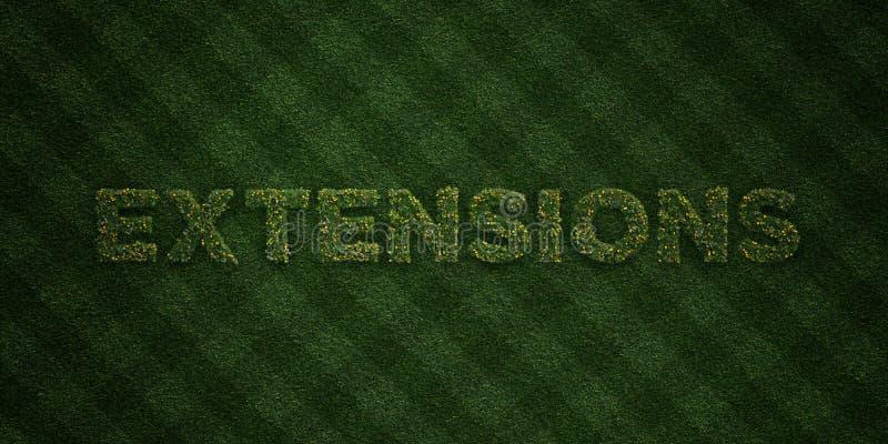 Las EXTENSIONES - letras frescas de la hierba con las flores y los dientes de león - 3D rindieron imagen común libre de los derec ilustración del vector