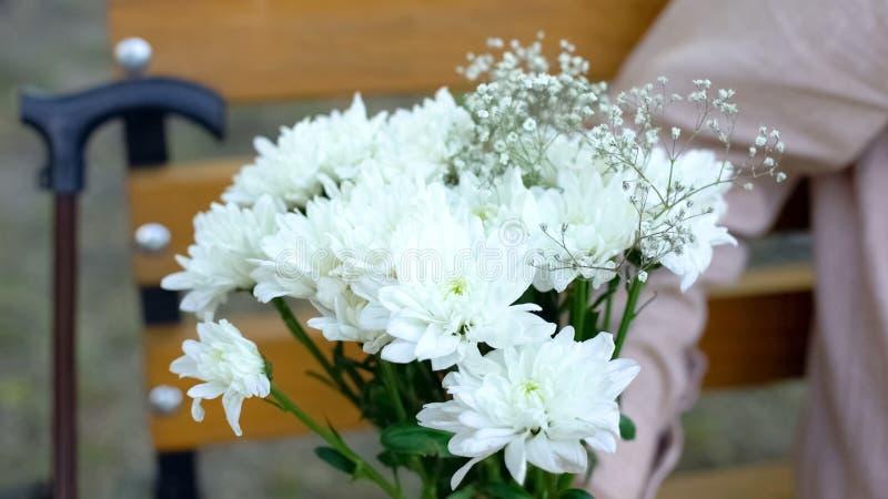 Las flores blancas hermosas en la mano masculina, fondo del bastón, pensionistas fechan imagenes de archivo