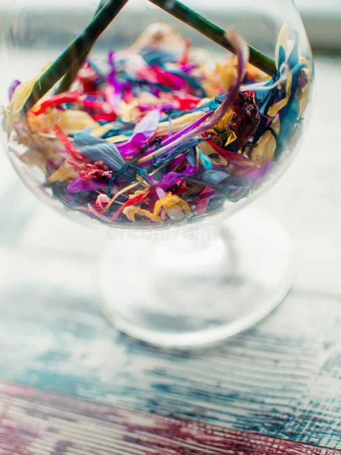 Las flores coloridas en vidrio, muchas flores en muchos colores están en el vidrio claro, opinión del primer de flores multicolor imagenes de archivo