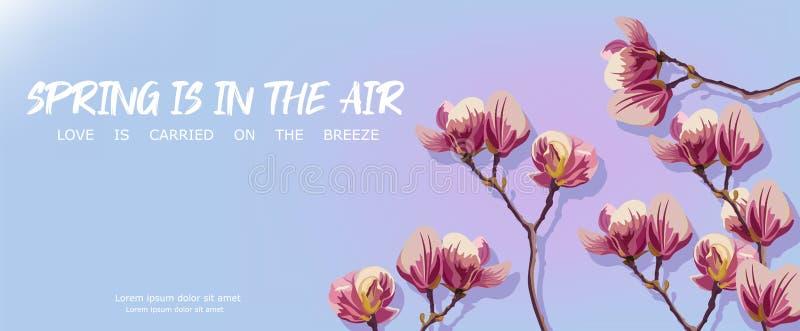 Las flores de la magnolia saltan vector Plantillas hermosas de la tarjeta Fondos azules libre illustration