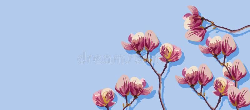 Las flores de la magnolia saltan vector Plantillas hermosas de la tarjeta Fondos azules ilustración del vector