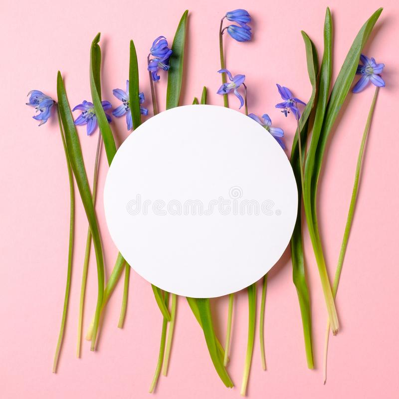 Las flores de la primavera con los p?talos y la rueda de engranaje azules formaron la tarjeta de papel en blanco en fondo rosado  fotos de archivo