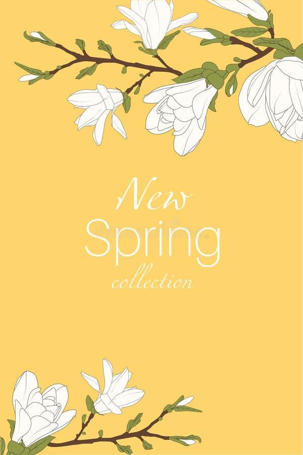 Las flores de la rama de árbol de la magnolia florecen los brotes del flor Elementos aislados del diseño E libre illustration