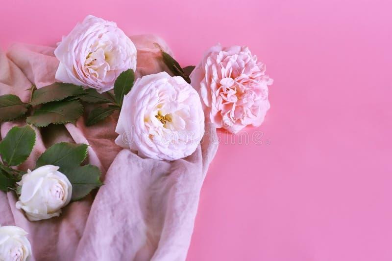 Las flores de la rosa son suavemente rosadas en color en un fondo en colores pastel de la lila dulce con el espacio de la copia E imágenes de archivo libres de regalías