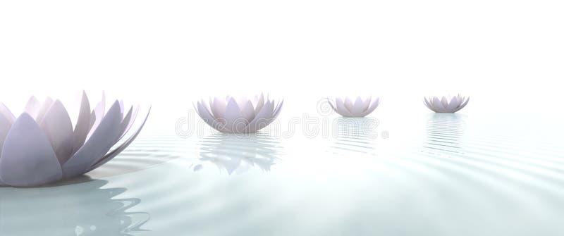 Las flores de loto del zen dibujan una trayectoria en el agua stock de ilustración