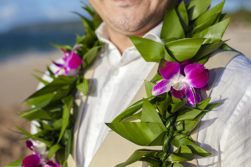 Las flores del novio imagen de archivo libre de regalías