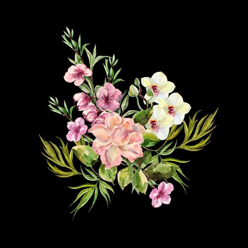 Las flores del ramo de la acuarela subieron, la orquídea, melocotón en un fondo negro ilustración del vector