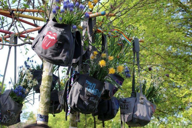 Las flores en bolsos exhiben los jardines de Keukenhof fotografía de archivo