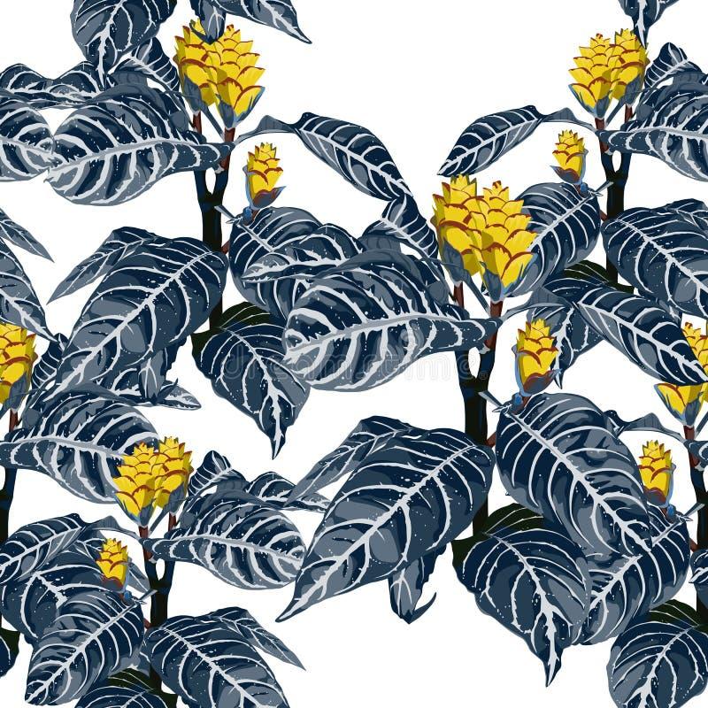 Las flores exóticas florecientes tropicales coloridas exhaustas de la mano, floral botánico y dejan el modelo inconsútil en color stock de ilustración