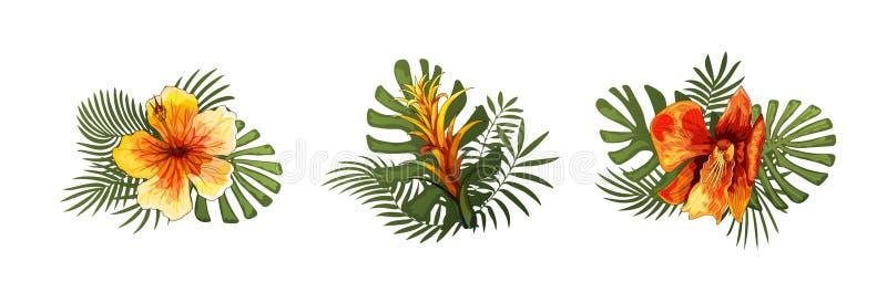 Las flores exóticas, las hojas tropicales diseñan elementos Ejemplos florales del vector imagen de archivo