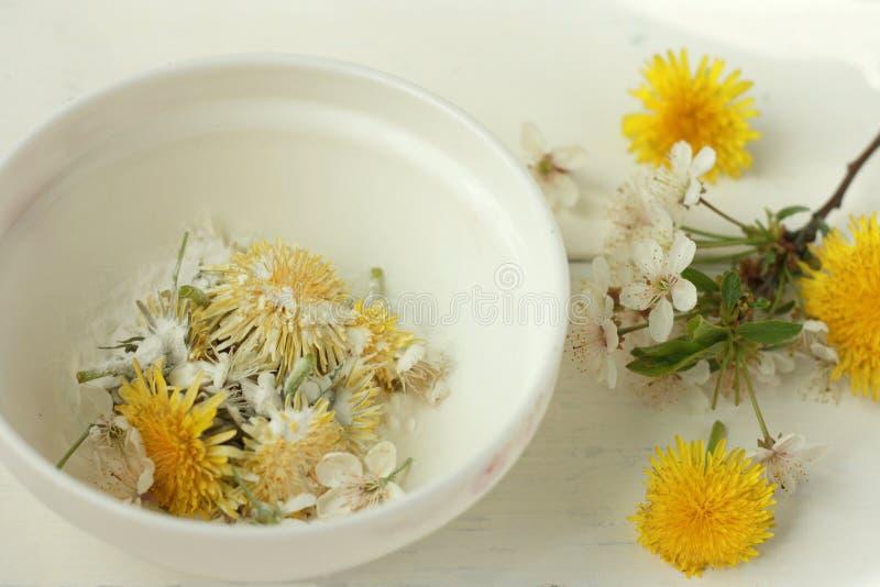 Las flores frescas hermosas del diente de león y las flores de la cereza en una placa blanca se asperjan con el azúcar en polvo,  imagenes de archivo