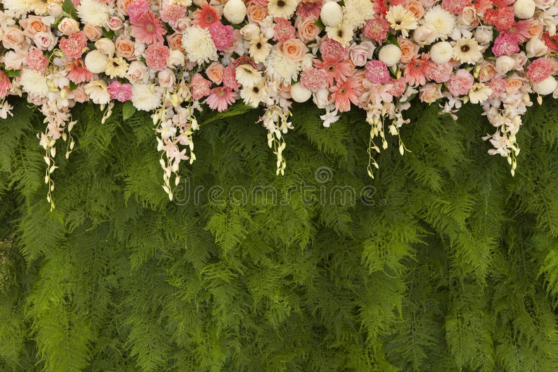 Las flores hermosas con el helecho verde salen del fondo de la pared para se casan imagenes de archivo