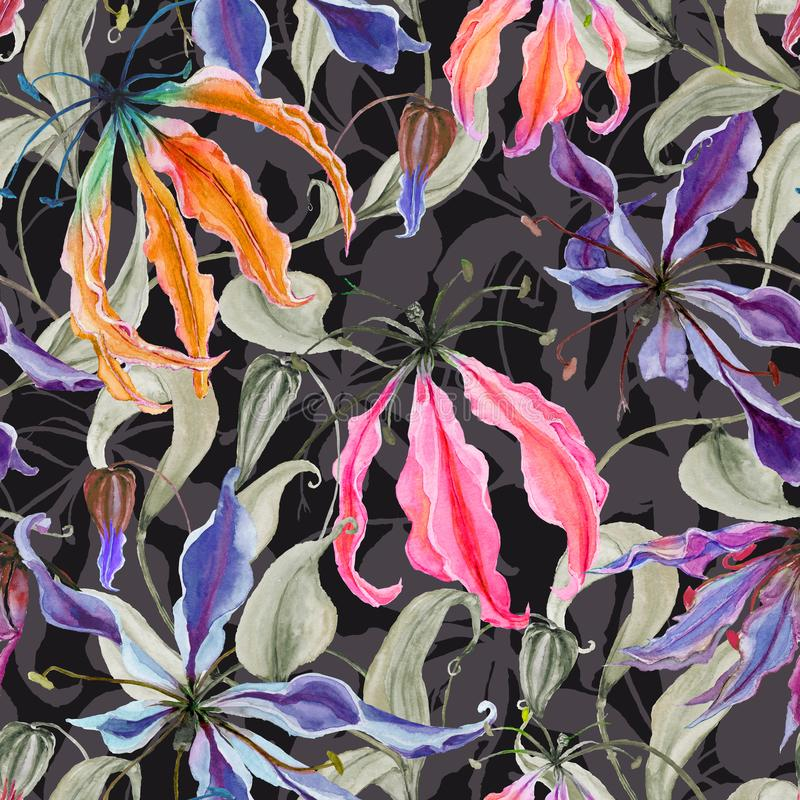 Las flores hermosas del lirio del gloriosa con subir se van en fondo oscuro Modelo floral inconsútil Pintura de la acuarela fotos de archivo libres de regalías